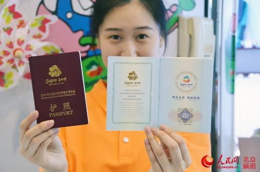 زن ویزا به دست